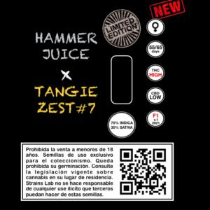 Hammer Juice x Tangie Zest7